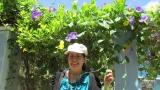Bên giàn hoa tím biếc...(đường xuống cầu Bến Gỗ)