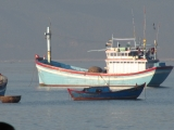 Sớm ở biển Quy Nhơn