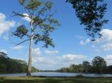 Chung quanh Angkor là hào rộng mênh mông như những hồ lớn