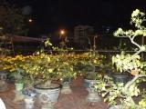 70. Sự kiện ở Bình Định