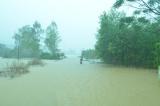 Lũ lụt 11/2013
